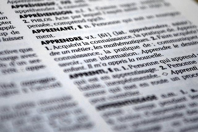 papírový slovník