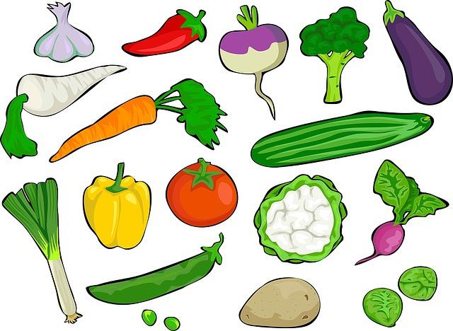 ovoce a zelenina ilustrace