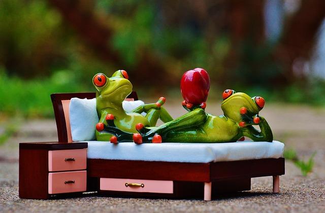 Dvě žáby na posteli