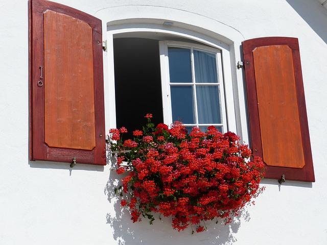 okno domu